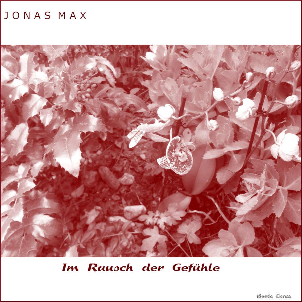 Gefühle von Jonas Max